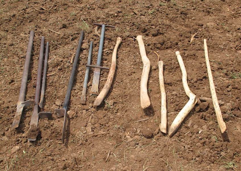 3. Traditional digging sticks (So'ya) are made from greasewood and oak. Modern planting tools are made from pipe.
